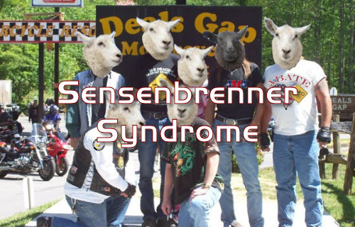Many American Bikers Suffer From Sensenbrenner Syndrome. Do You? - Vancouver Media Co-op